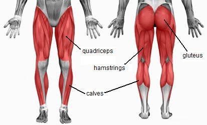 articulațiile rănesc loviturile de box dureri articulare colchicină
