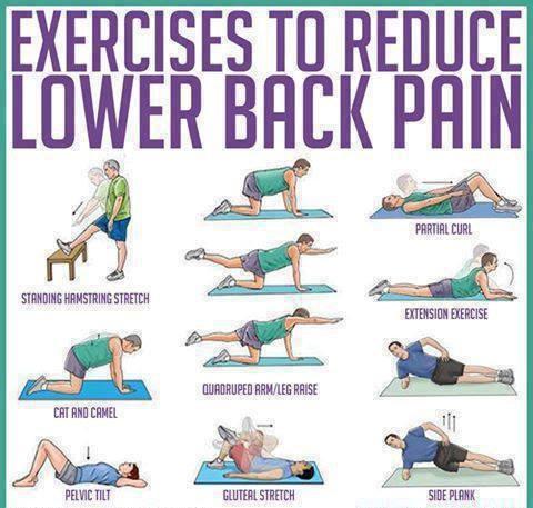 latihan fisik low back pain  nyeri punggung bawah