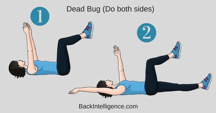 posisi dead bug